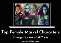Top Female Marvel Characters