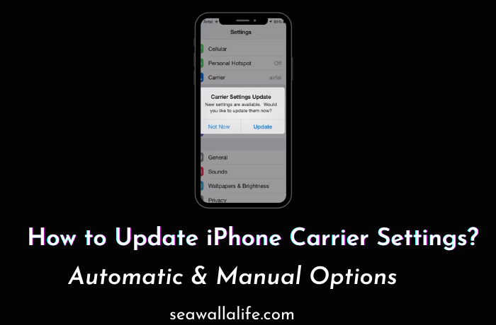 How to Update iPhone Carrier Settings