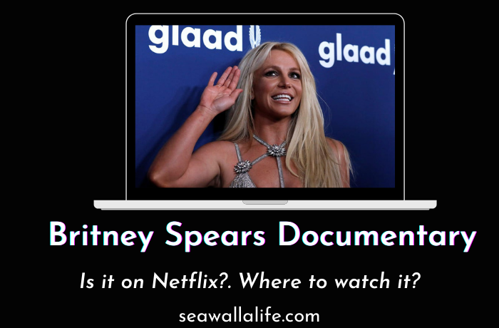Britney Spears Documentary
