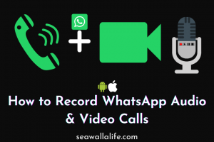How to Record WhatsApp Audio & Video Calls