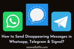 How to Send Disappearing Messages in Whatsapp, Telegram & Signal